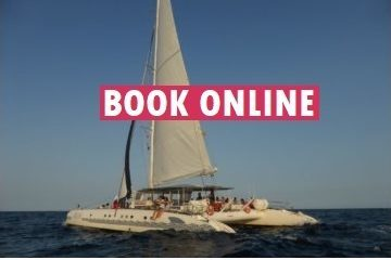 book a skyline catamaran cruise online