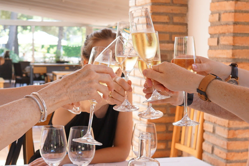 Drink Cava in a winery in Barcelona